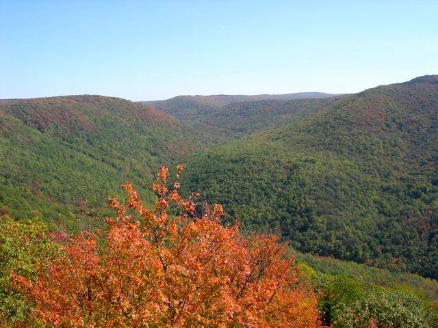 fall photo of trees leaves changing colors over the rolling hills of WV.